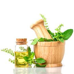 Plantas-medicinales - Farmacia Cuquerella Sueca